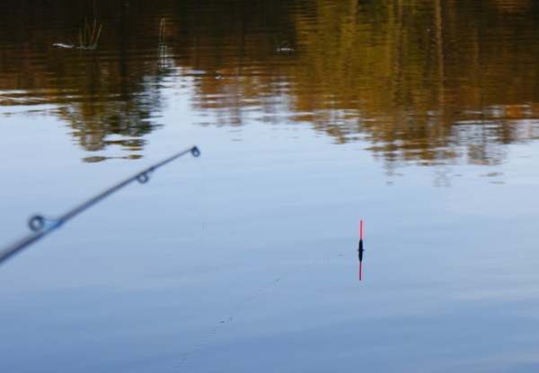 рыбалка на карпа весной на поплавок видео